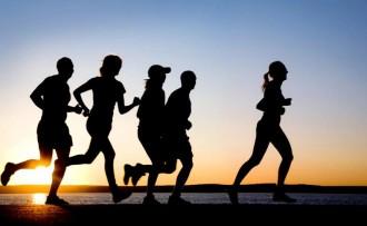 attività fisica e mentale